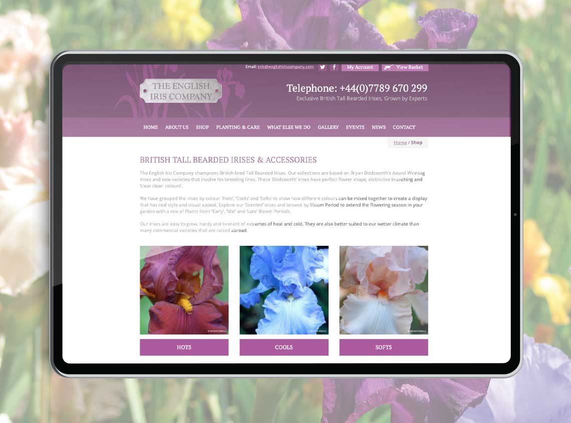 Our work english iris company ecommerce website 2